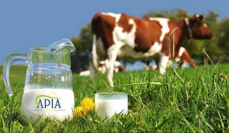 APIA a demarat plata ajutorului de stat în sectorul bovin!